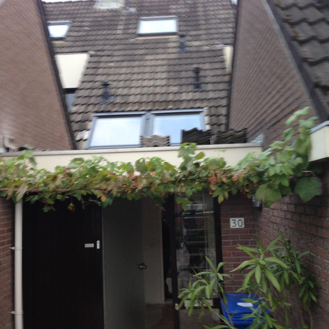 Nieuwe plafond dakramen in AA landen Zwolle